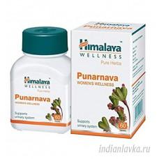 Пунарнава (Purnarnava) Himalaya/Индия – 60 шт.