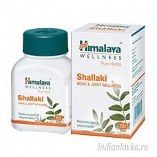 Шалаки (Shallaki) Himalaya/Индия – 60 шт.